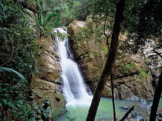 Elemental Eco-Retreat & Adventure Tours - Rio Grande vacation rentals