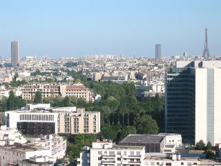 Superb flat, Paris view , Wifi, phone free Pool - Courbevoie vacation rentals