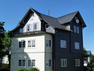 Nice Condo with Television and Central Heating - Oberhof vacation rentals