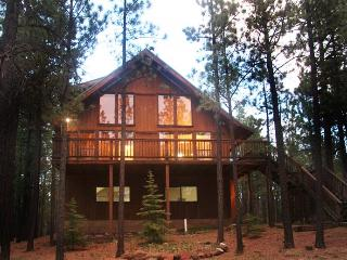Awesome 3 bedroom (sleeps 12) Mountain Log Cabin - Angel Fire vacation rentals