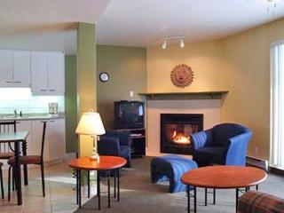 Cozy 2 bedroom Château-Richer House with Internet Access - Château-Richer vacation rentals