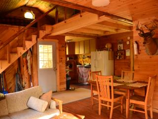 2 bedroom Cottage with Internet Access in Kingfield - Kingfield vacation rentals