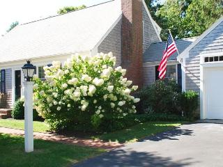 17 Palmer Drive Chatham Cape Cod - The Little Caper - Chatham vacation rentals