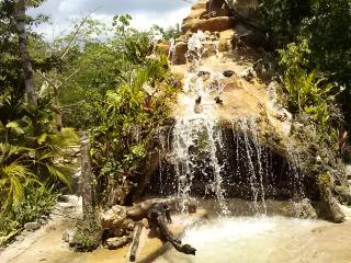 Los Jaguares :Room in the forest of Tulum - Tulum vacation rentals