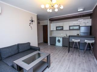 Sunny and nice flat on Mashtots av. - Yerevan vacation rentals