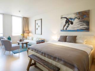 SERVICED SENIOR STUDIO APARTMENT WOLFRAM - Zurich vacation rentals