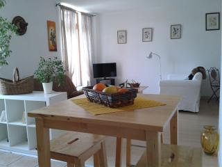 Appartement residence le brin d'amour - Bize-Minervois vacation rentals