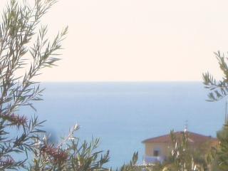 Erika casetta a  5 minuti dalle spiagge di imperia - Poggi vacation rentals