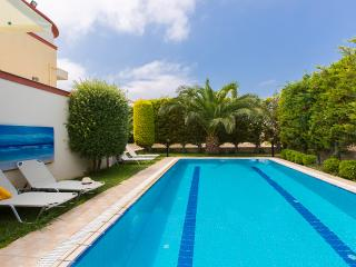 Villa Chrisi I, close to the beach! - Sfakaki vacation rentals