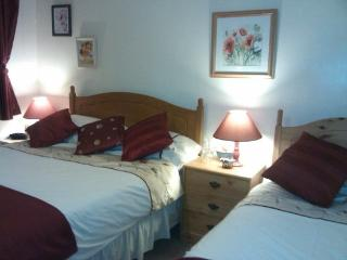 Palm Garden House Bed and Breakfast - Par vacation rentals