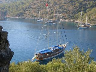 Platin Yachting Yacht Charter in Turkey TR012 - Marmaris vacation rentals