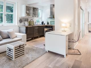 Serviced One Bedroom Town Apartment 5 - Wiesbaden vacation rentals