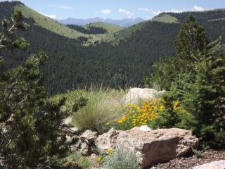 Soaring Eagle:3bd house,mountain views, hot tub - Canon City vacation rentals