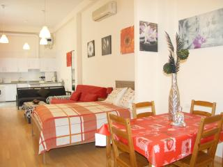 Loft 3 - Prime Location (Málaga Center) - Malaga vacation rentals