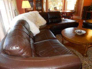 Perfect House with Internet Access and Dishwasher - Ludington vacation rentals