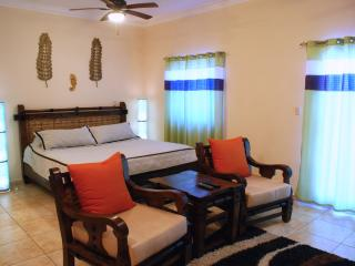 Ocean Dream beachfront studio close to all - Cabarete vacation rentals