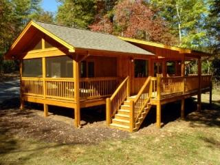 Laurel Escape * Convenient to Blue Ridge & Murphy - Blue Ridge vacation rentals