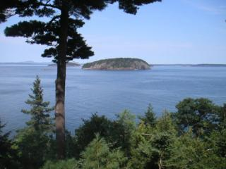 Cedar Ledge & Apt. - Bar Harbor vacation rentals