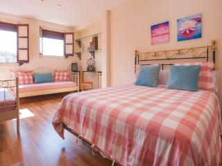 ATICO-TEERAZA IMPERIAL - Toledo vacation rentals