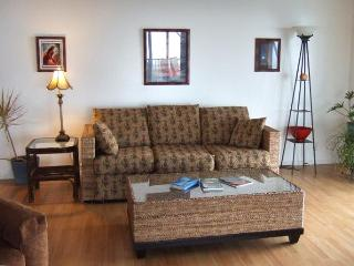Vacation on a 100yr Old Lava Field! - Ocean View vacation rentals