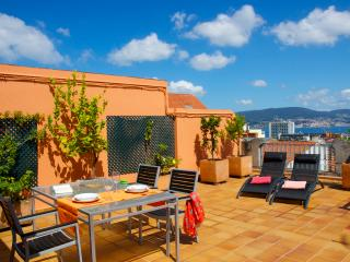 Right at the center w/ terrace, sea views and WiFi - Vigo vacation rentals