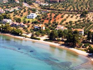 Elia house by the sea ideal for chirdren & seniors - Nikiti vacation rentals