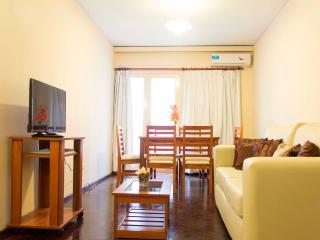 Hermoso departamento en el corazón de la ciudad - Mendoza vacation rentals
