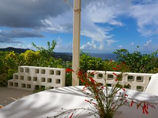 Mountain Top Private Retreat - studio with a view - Christiansted vacation rentals