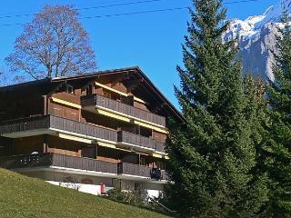 Bodmisunne - Grindelwald vacation rentals