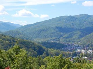 Vacation Rental in Gatlinburg
