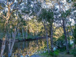 Noosa, 4 acres riverfront bush and fishing kyaks - Tewantin vacation rentals