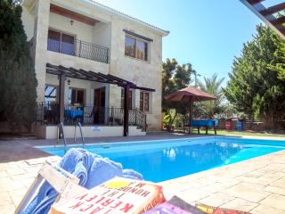 Beautiful 3 bed villa, quiet location,private pool - Argaka vacation rentals