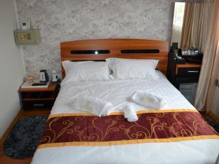 Adorable 15 bedroom Tulcea Houseboat with Dishwasher - Tulcea vacation rentals
