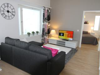 Nice Condo with Elevator Access and Housekeeping Included - Lappeenranta vacation rentals
