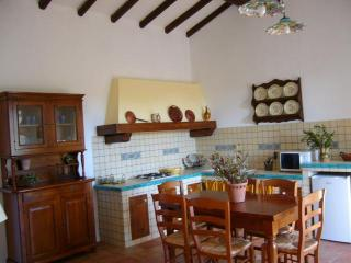 Casa Camelia:Etna,peace,lemon trees,lovely beaches - Santa Venerina vacation rentals