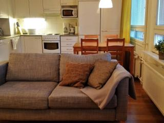 Cozy and comfortable 1BR with sauna - Oulu vacation rentals