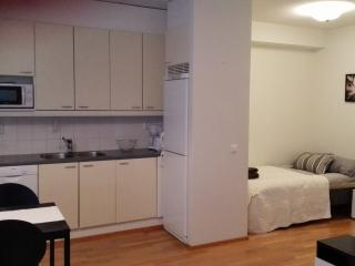 Stylish Studio Apartment close to the City Center - Oulu vacation rentals