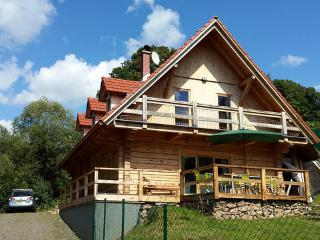 Perfect 4 bedroom Chalet in Orlicky - Orlicky vacation rentals