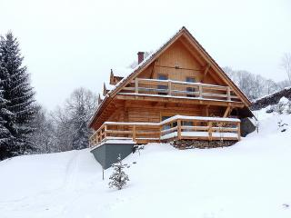Perfect Chalet with Internet Access and Satellite Or Cable TV - Orlicky vacation rentals