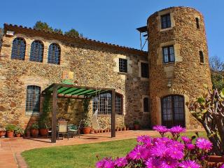 CB442 - Wonderful Masia, perfect for relaxation! - Vall-Llobrega vacation rentals