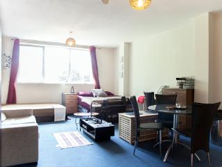 Greenwich Park Apartments - Studio - London vacation rentals