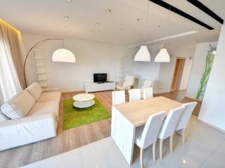 Shiny top floor apartment - Vilnius vacation rentals