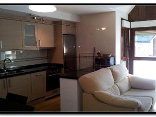 Cozy 2 bedroom Condo in Biescas - Biescas vacation rentals