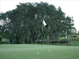 Great Getaway in Beautiful Country Club - Bradenton vacation rentals