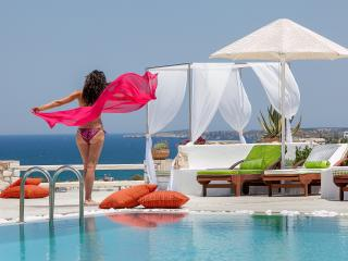 Blue mare Villas-Villa Thalasa - Naoussa vacation rentals
