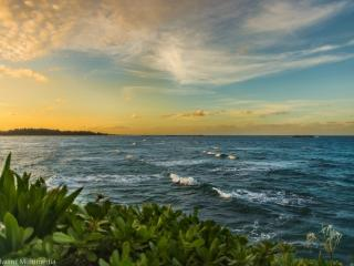 Hibiscus Estate - Winter Specials! Enjoy the view! - Laie vacation rentals
