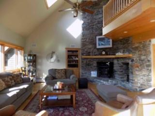 Perfect House with Internet Access and Dishwasher - Stowe vacation rentals