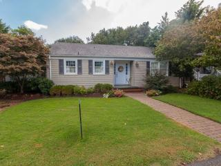 3 bedroom Cottage with Deck in Virginia Beach - Virginia Beach vacation rentals