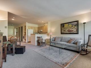 Muscatel Flats #20 - Telluride vacation rentals