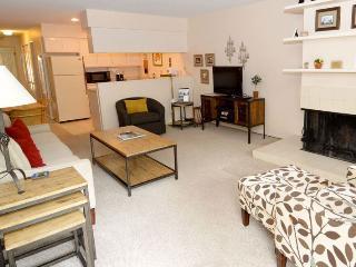 210 Cooper Unit 2D - Aspen vacation rentals